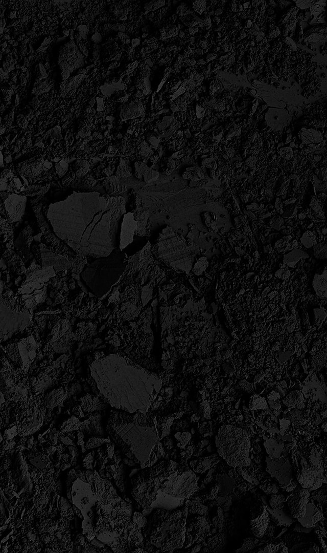 Roger Dubuis, Velvet collection main visual
